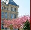 Palais de l'Université depuis la Place OLLIER - 2 Avril 2012